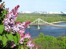 A branch of lilac against the backdrop of the city of Kiev. Royalty Free Stock Photography