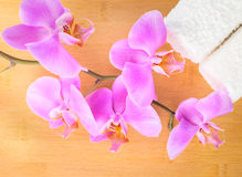 Branch lilac orchid and white towels on bamboo Stock Photos