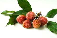 A branch of litchi with green leaves on white background stock photos