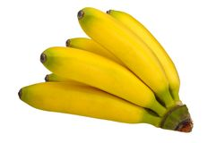 Branch of mini bananas Stock Images
