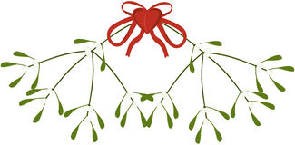 Branch of mistletoe Stock Images