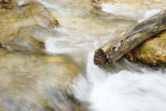 Branch in mountain river Royalty Free Stock Photography