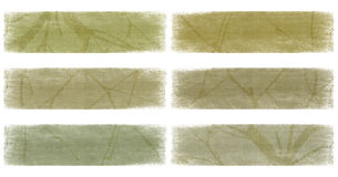 Branch on neutral earth tones banner set isolated Royalty Free Stock Image