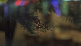 Branch New Year tree and red berries hanging on window glass close up. Decorative fir tree and lighting garland for. Christmas holiday on glass stock footage