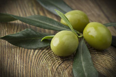 Branch with olive Stock Images