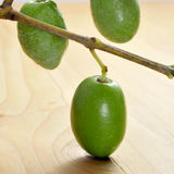 Branch of olive tree. Closeup of a branch of olive tree with green olives on a wooden surface Stock Photo