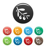Branch of olives icons set color stock illustration