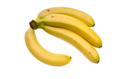 Branch of overripe bananas Stock Photo
