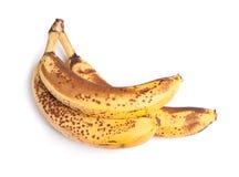 Branch of overripe bananas Royalty Free Stock Photos