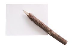 Branch pencil on white paper Royalty Free Stock Photography