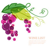 Branch of pink grape with green leaves. Abstract vector watercol Royalty Free Stock Photo