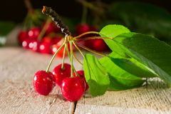 Branch of red cherries closeup on a wooden table Royalty Free Stock Photography