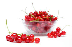 Branch of red currant. S against the background of bowl with berries Royalty Free Stock Images