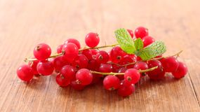 Branch of red currant. On wood background royalty free stock photos