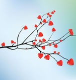 Branch with red hearts. I love you. Stock Photography