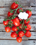 Branch of red ripe cherry tomatoes and label Stock Image