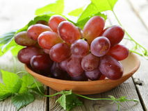 Branch of red ripe grapes with green leaves Royalty Free Stock Photo