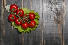 Branch red tomatoes on dark background Royalty Free Stock Image