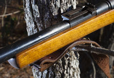 Branch for a rifle rest Royalty Free Stock Photo