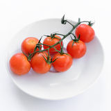 Branch of ripe cherry tomatoes Stock Photography
