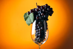 Branch of ripe grapes in a glass of wine Stock Photo