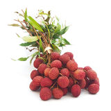 Branch of ripe lychee fruit Stock Photos