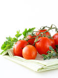 Branch of ripe red tomato with greens and herbs Royalty Free Stock Images