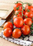 Branch of ripe red tomato with greens and herbs Stock Photography