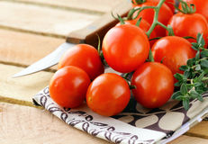 Branch of ripe red tomato with greens and herbs Stock Photo