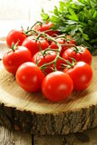 Branch of ripe red tomato Royalty Free Stock Photos