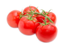 Branch of the ripe red tomatoes closeup Royalty Free Stock Images