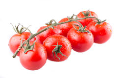 Branch of ripe red tomatoes. On a white background. can be used for display in a shop window Royalty Free Stock Image