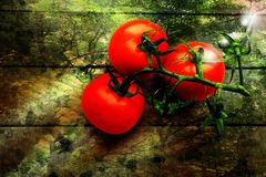 A branch of ripe tomatoes lies on wooden patterned surface royalty free stock image