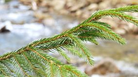 Branch river mountain. Through frosted branches river mountain stock footage