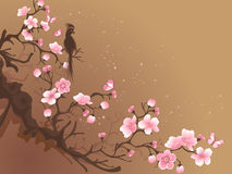 Branch of sakura. And bird on a brown background vector illustration