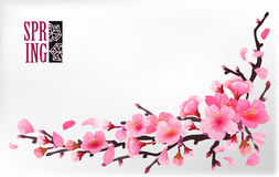 Branch of sakura or cherry blossom. Branch with blooming and leaves on light background. Cherry blossom japan spring design. Vector illustration stock vector vector illustration