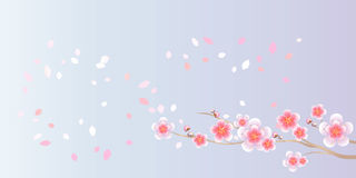 Branch of Sakura and petals flying isolated on light blue purple background. Apple-tree flowers. Cherry blossom. Vector EPS 10. Cmyk Royalty Free Illustration