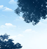 Branch silhouette with blue sky background Stock Photos