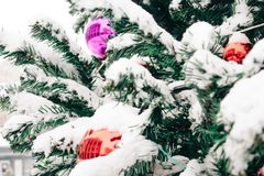 branch with snow of Christmas tree with colored Christmas ball outdoors, new year concept stock images