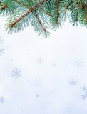 Branch and snowflakes Stock Image