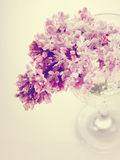 Branch with spring lilac flowers in a glass. Royalty Free Stock Image