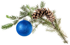 Branch of spruce with cone and blue ball on white Royalty Free Stock Photos