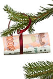 The branch of spruce with ruble, on white background Royalty Free Stock Photography