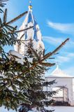 Branch of a spruce tree. Orthodox temple in the background royalty free stock image