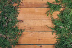 Branch of thuja on wooden baclground Stock Image