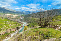 Branch of Tigris river in Iraq. Beauty of nature in Kurdistan region in Iraq near Erbil city stock photography