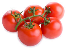 Branch of tomatoes. On white background Royalty Free Stock Images
