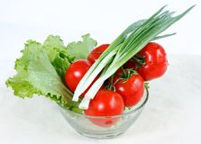 Branch of tomatoes, green onions and lettuce Stock Image