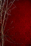 Branch of a tree on a red background with a pattern. Background Stock Photo