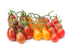 Branch varicolored cherry tomatoes Royalty Free Stock Images